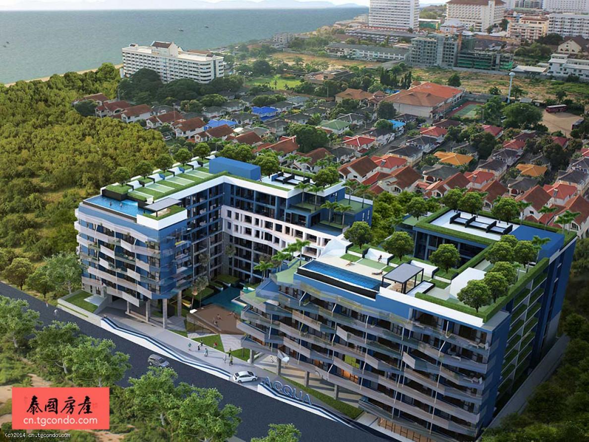 泰国芭堤雅中天水象公寓37平1房 Acqua Condo