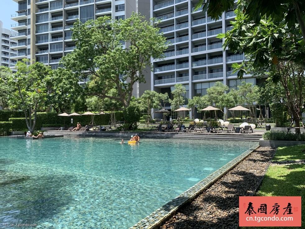Zire Wongamat芭堤雅那歌高层公寓小区超大豪华海景泳池